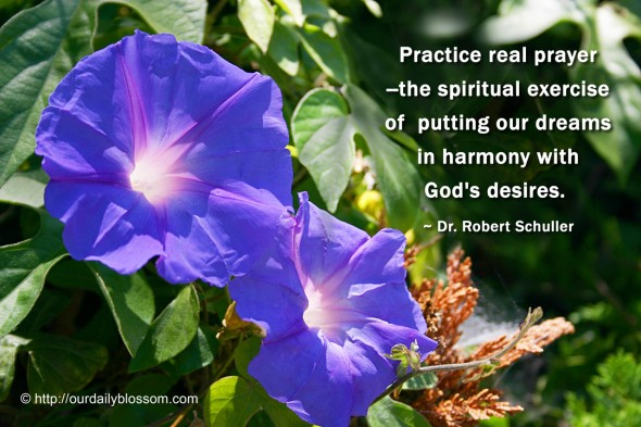 Practice real prayer--the spiritual exercise of putting our dreams in harmony with God's desires. ~ Dr. Robert Schuller