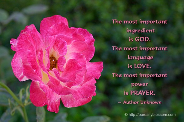 The most important  ingredient  is GOD.  The most important  language  is LOVE.  The most important  power  is PRAYER. ~ Author Unknown