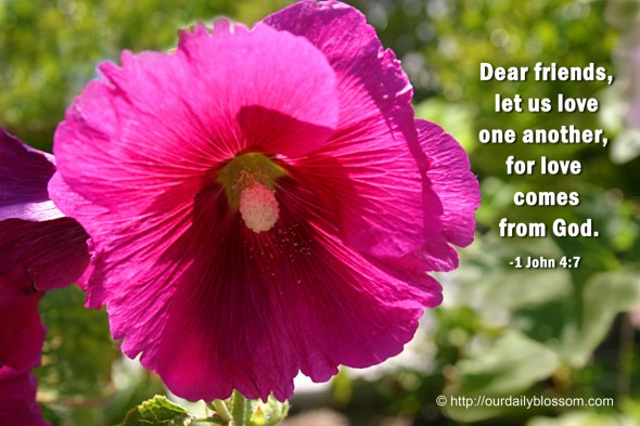 Dear friends, let us love one another, for love comes from God. ~ 1 John 4:7