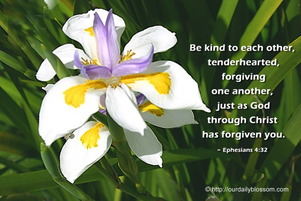 Be kind to each other, tenderhearted, forgiving one another, just as God through Christ has forgiven you. ~ Ephesians 4:32