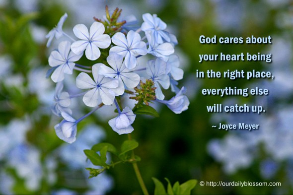 God cares about your heart being in the right place, everything else will catch up. ~ Joyce Meyers