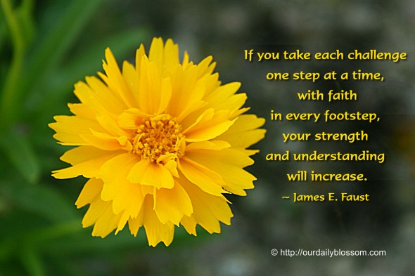 If you take each challenge one step at a time, with faith in every footstep, your strength and understanding will increase. ~ James E. Faust