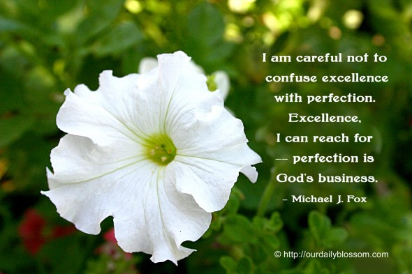 I am careful not to confuse excellence with perfection. Excellence, I can reach for--perfection is God's business. ~ Michael J. Fox