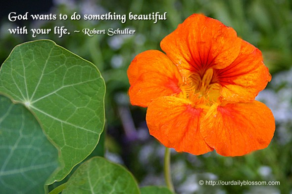 God wants to do something beautiful with your life. ~ Robert Schuller