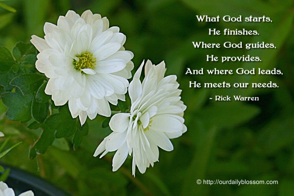 What God starts, He finishes. Where God guides, He provides. And where God leads, he meets our needs. ~ Rick Warren