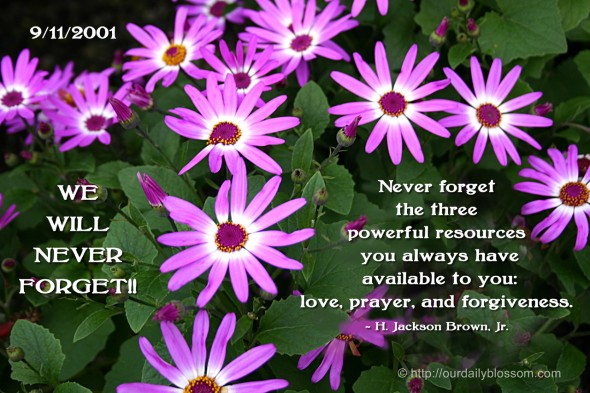 Never forget the three powerful resources you always have available to you: love, prayer, and forgiveness. ~ H. Jackson Brown, Jr.