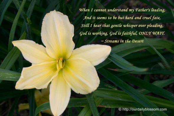 When I cannot understand my Father's leading, And it seems to be but hard and cruel fate, Still I hear that gentle whisper ever pleading, God is working, God is faithful, ONLY WAIT. ~ Streams in the Desert