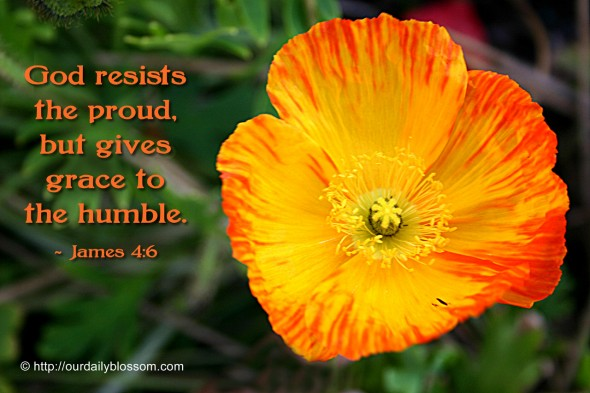God resists the proud, but gives grace to the humble. ~ James 4:6