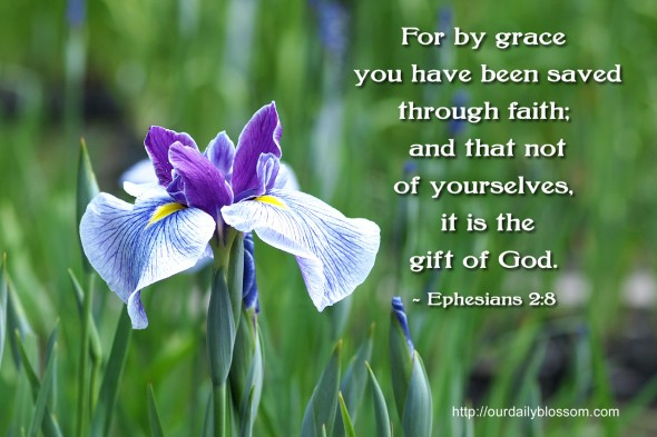 For by grace you have been saved through faith; and that not of yourselves, it is the gift of God. ~ Ephesians 2:8