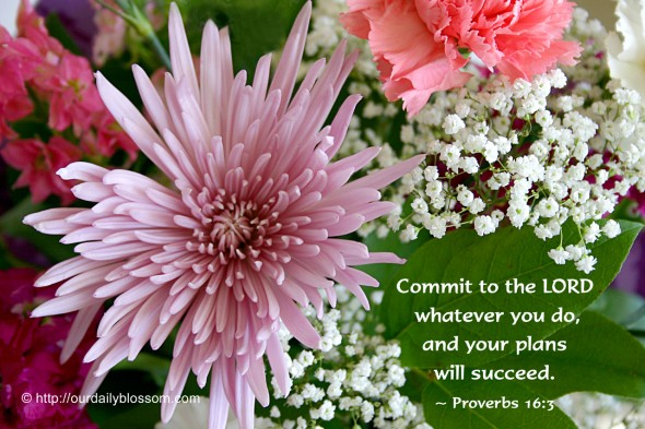 Commit to the LORD whatever you do, and your plans will succeed. ~ Proverbs 16:3